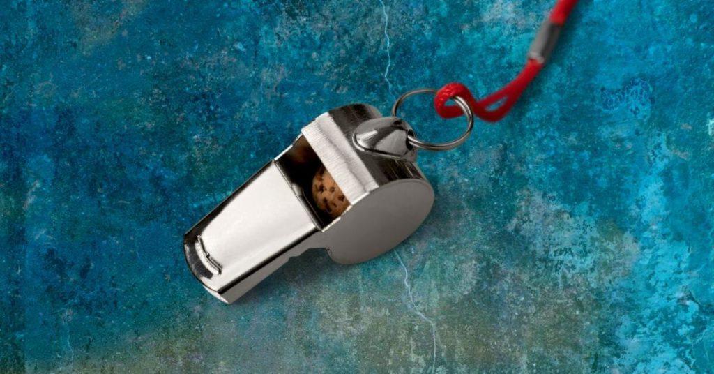 Qui Tam Lawsuit Whistleblower